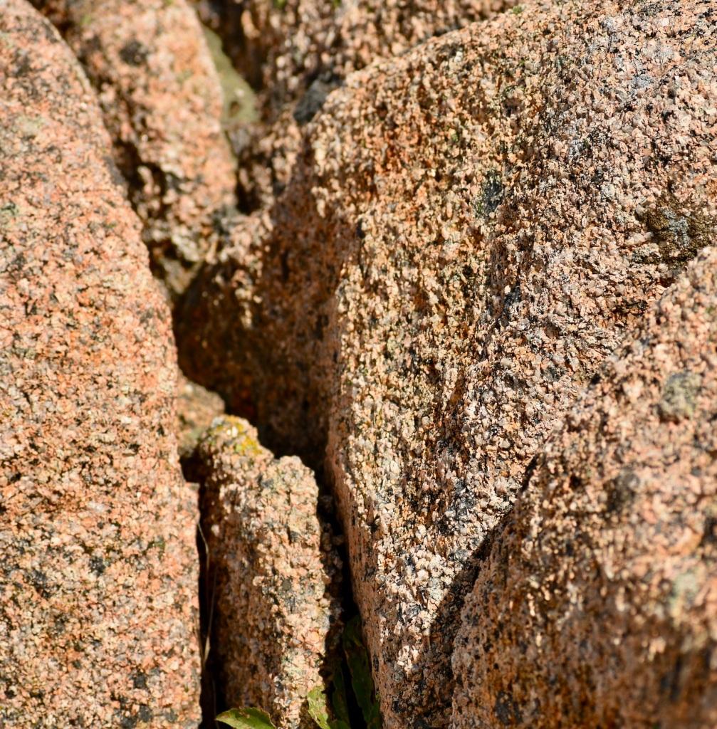 Acadia pink granite